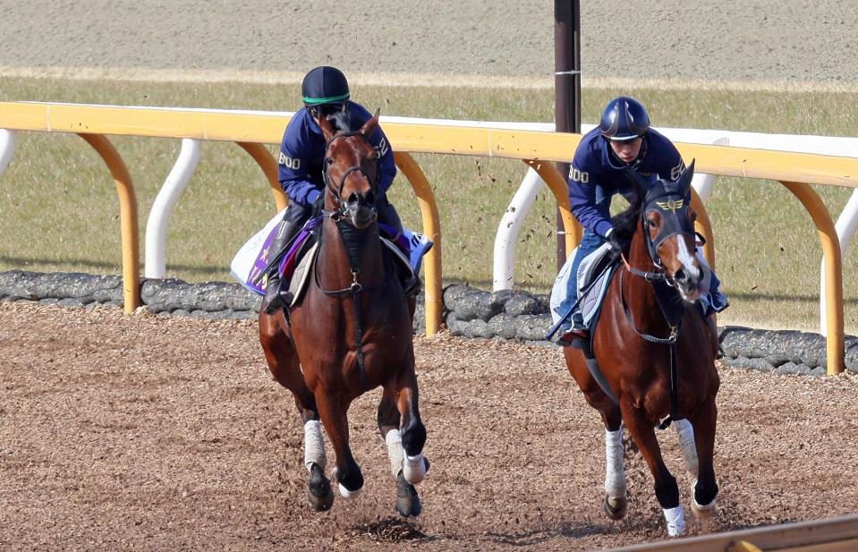 報知杯弥生賞ディープインパクト記念に出走するダノンザキッド(左)